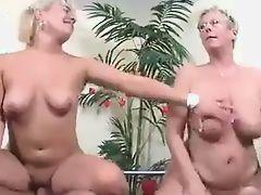 Tube Sex Tube